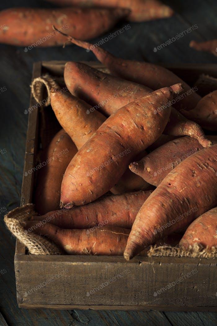 Rohe Bio Süßkartoffeln
