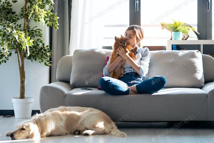 Attraktive Frau küsste ihren kleinen süßen Hund, während sie zu Hause mit ihren Hunden und ihrer Katze auf der Couch sitzt.