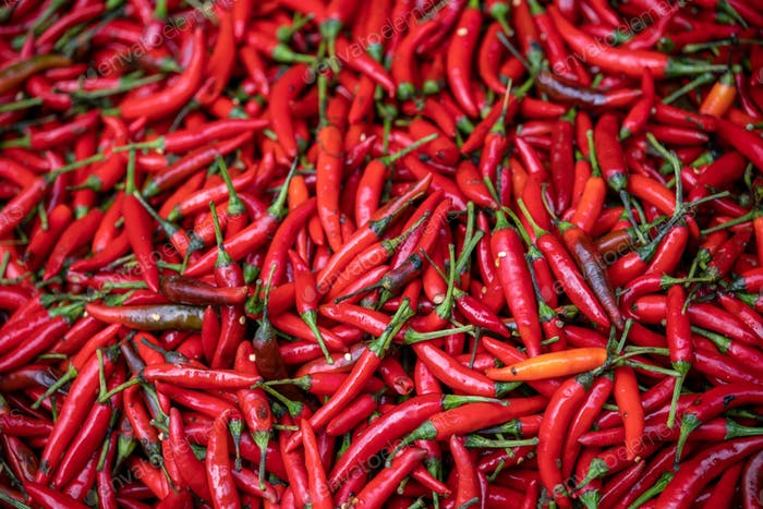 Red hot Chillies on sale