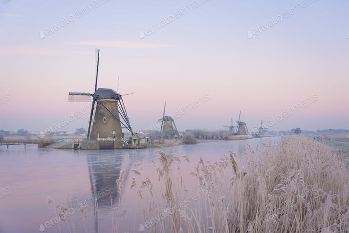 Pastel sunrise over windmills in winter