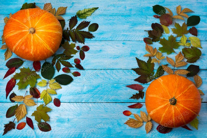 Thanksgiving  greeting with pumpkin and autumn leaves on blue wo