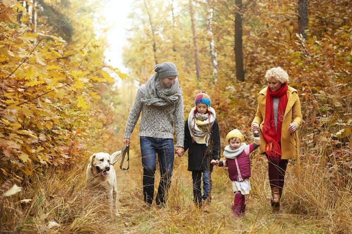 Семья и их собака в лесу