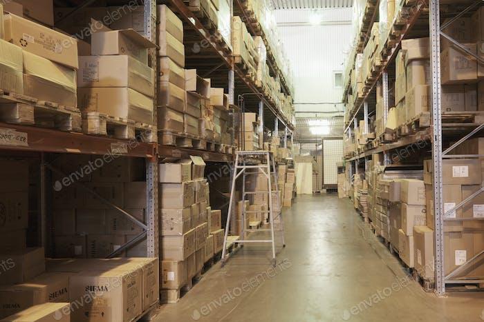 53164,Warehouse Stepladder