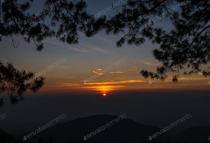 Sunrise over Mountain Landscape background with pine