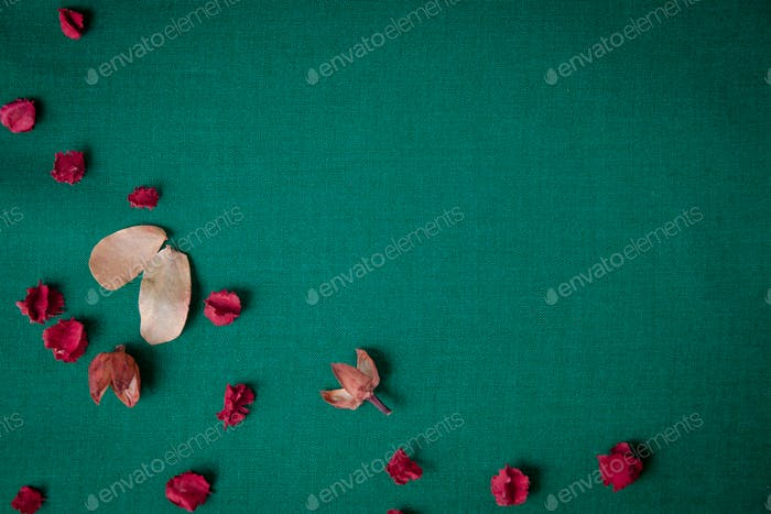 green background with dry red flower.