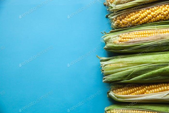 Mais auf einem blauen Hintergrund, gesundes Essen, Obst