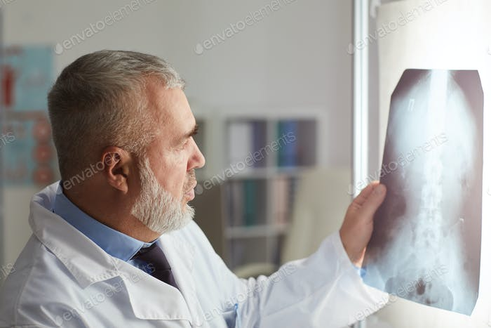 Radiologist working with x-ray image