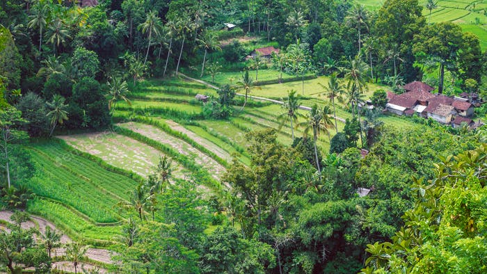 Rice tarrace and small village in Sidemen, Bali, Indonesia