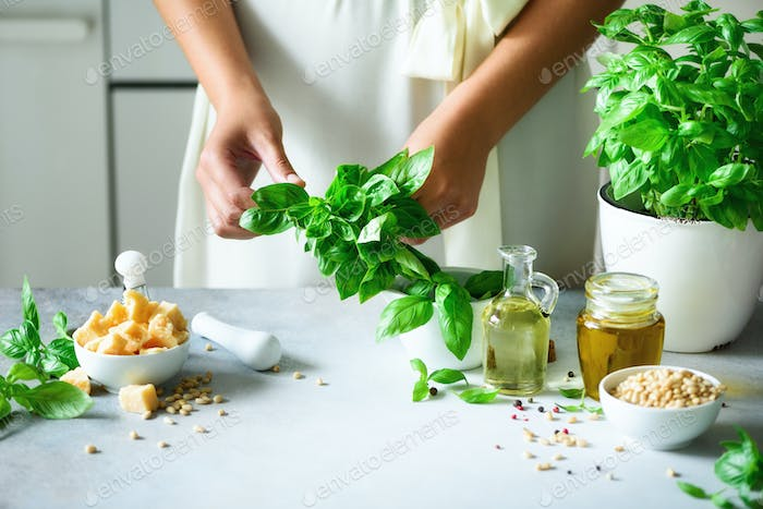 Woman in oversize dress holding pot with fresh organic basil, white kitchen interior design. Copy