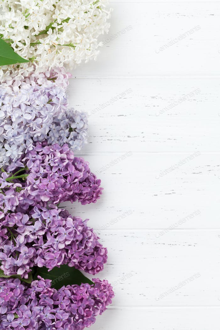 Thumbnail for Colorful lilac flowers
