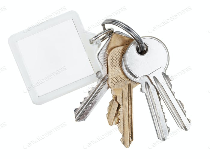 several door keys on ring and keychain