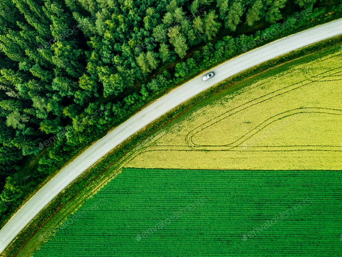 Aerial view of car driving on road along the green forest and potato with yellow rapeseed fields