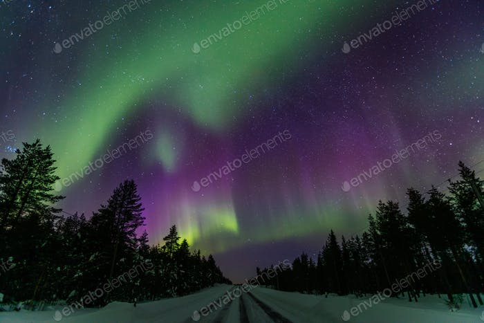 Northern Lights (Aurora Borealis) in the night sky over winter Lapland Finland