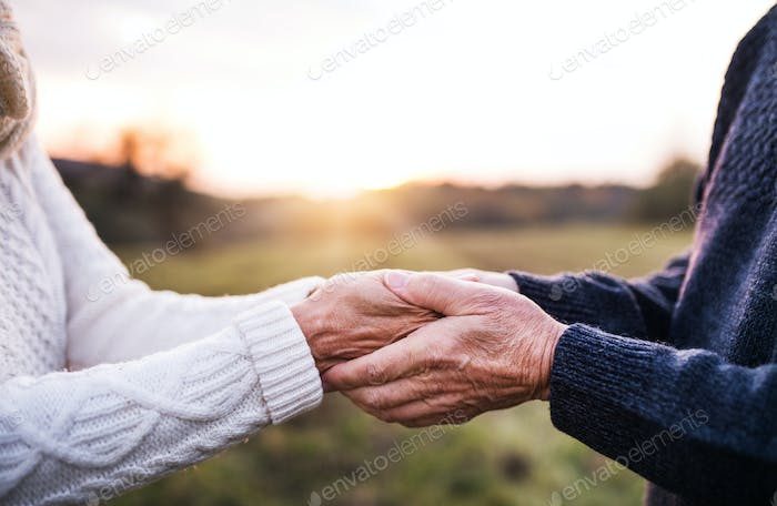 A close-up of holding hands of senior couple in an autumn nature at sunset.