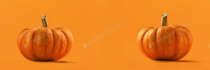 Total orange autumn, Halloween, Thanksgiving day concept