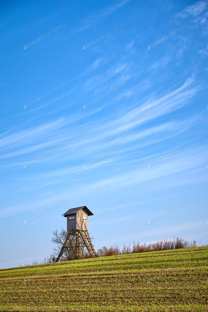 Farmland with elevated wooden hunting blind in warm morning sunlight.