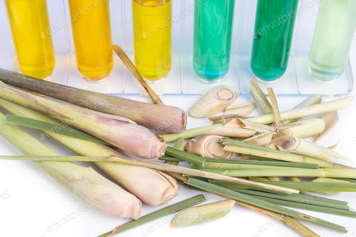 Close-up on lemongrass essential oil extract with test tubes in laboratory setting