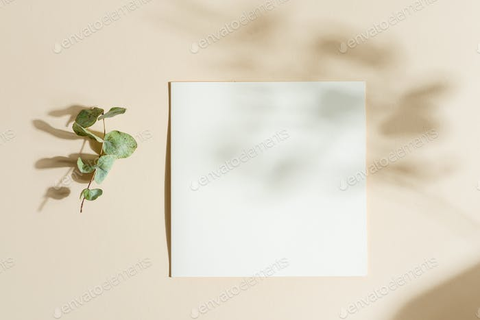Blank paper card attached pegs hans on a rope with leaf