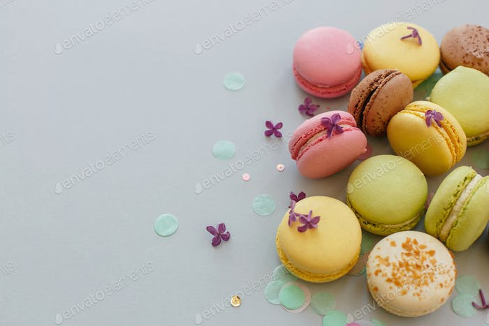 Colorful macarons on trendy pastel gray paper with lilac flowers and confetti