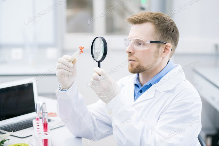 Scientist studying meat sample through magnifying glass