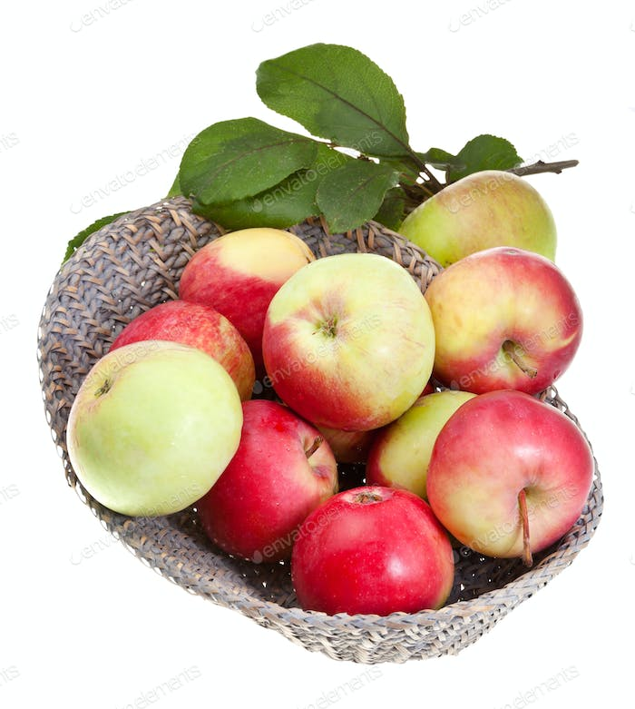 red and yellow apples in straw basket isolated