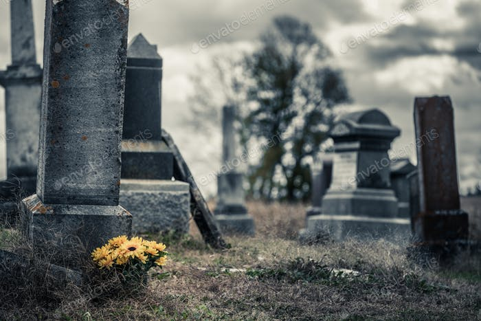 Sunflowers Bouquet in a Sad Cemetery