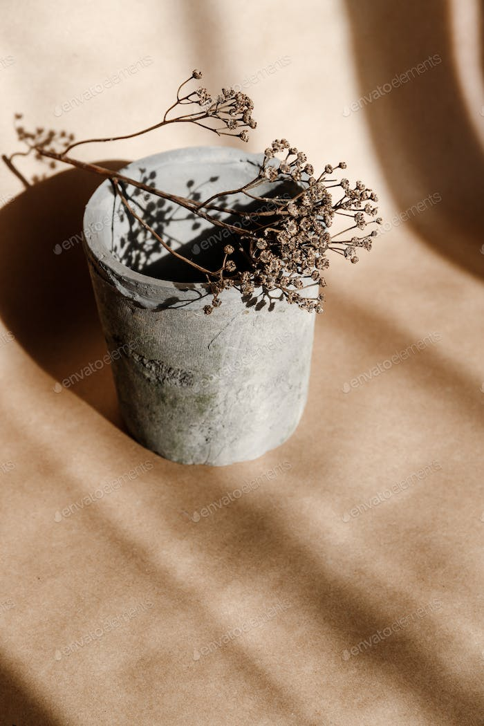 Abstract creative minimal composition with a clay pot and dry grass against kraft paper