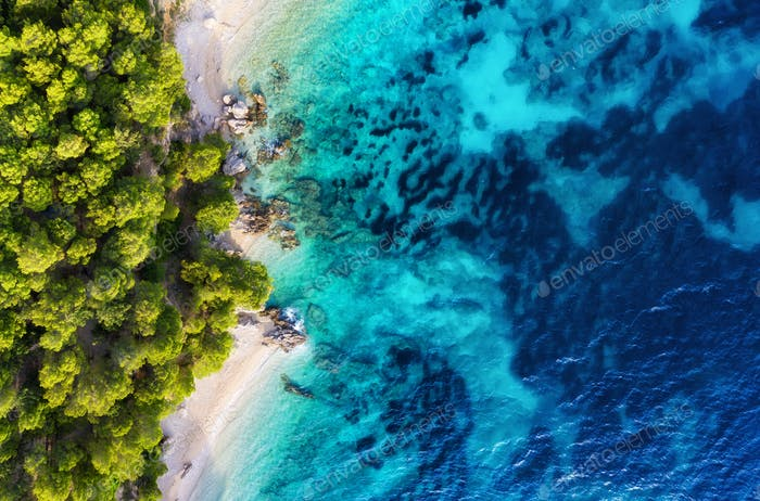 The shoreline with forest and sea. View from the air in Croatia