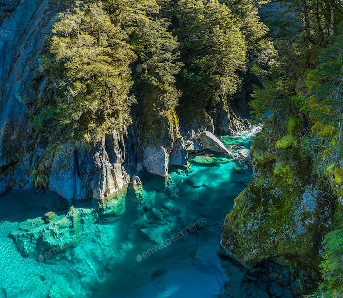 Berühmte Attraktion - Blue Pools, Haast Pass, Neuseeland, Süden