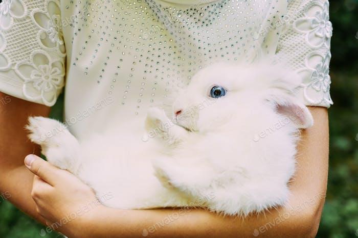 Little Girl Holding In Hands Her Loving Cute Pet White Rabbit