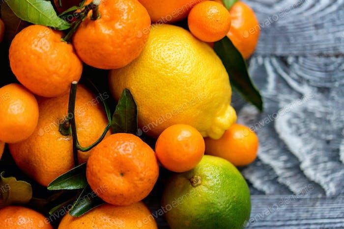 Close-up of various citrus fruits
