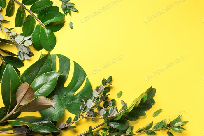 Creative layout made of tropical green leaves on yellow background. Flat lay. Top view. Summer or