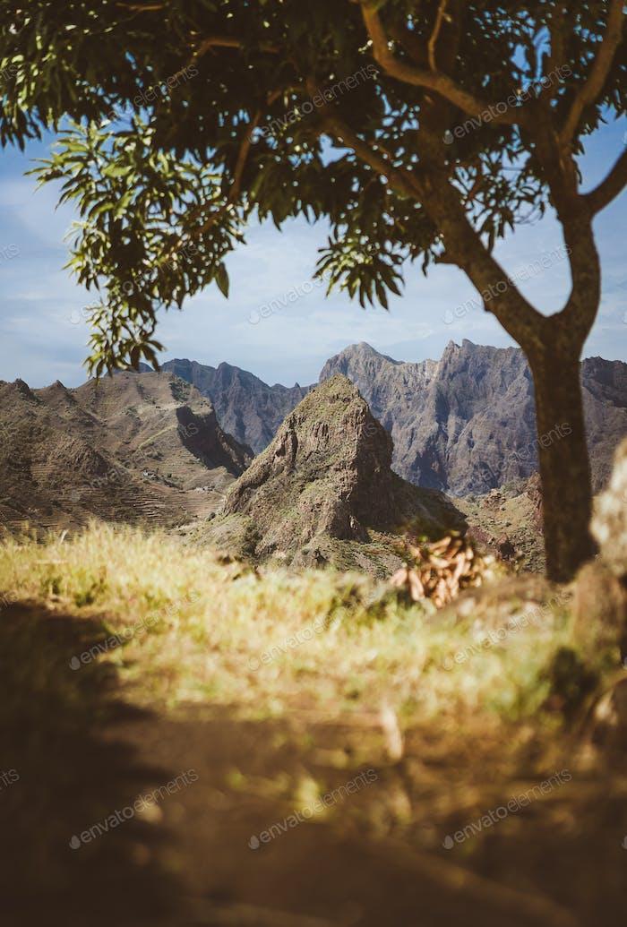 Erstaunlich riesige karge Gebirgskette am Horizont erscheinen. Leuchtende Sonne der einzige Mangobaum