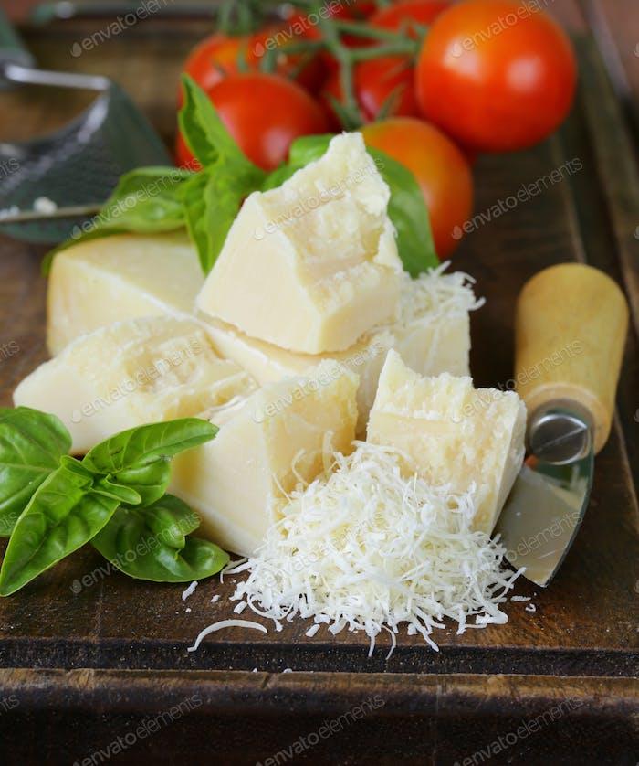 Fresh Tasty Hard Parmesan Cheese