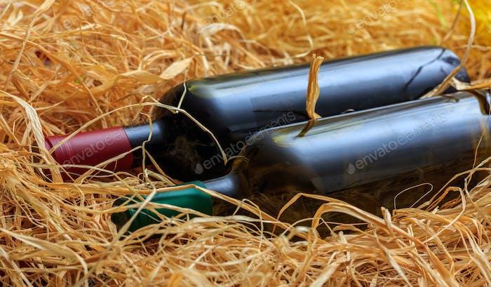 Wine bottles on straw background