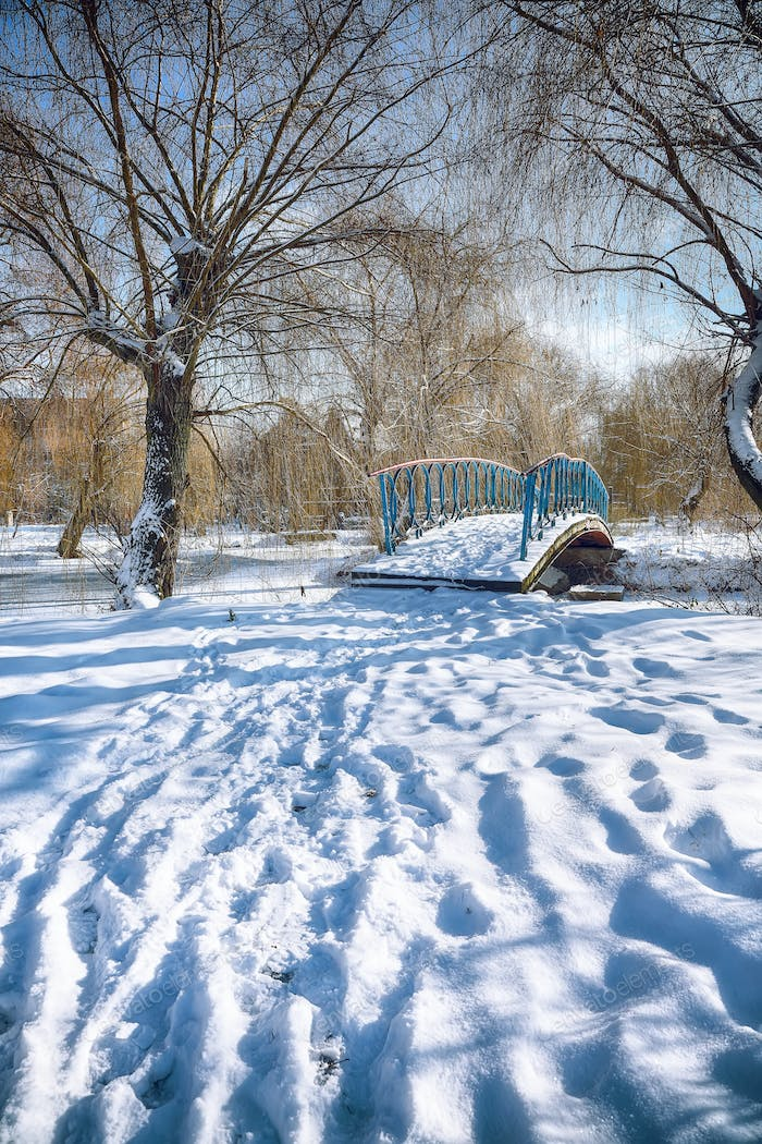 Winter frosty trees and old snowy bridge in the winter park