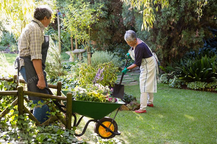 Senior couple gardening in the garden