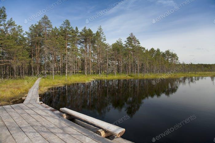 Calm Lake in Viru Bog