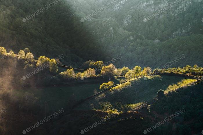 Luces de otoño bañan los bosques y montañas