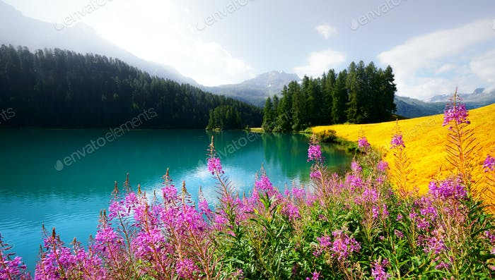 Amazing sunny day at Champferersee lake in the Swiss Alps