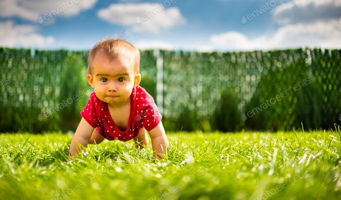 Cute one year old baby girl having fun on the grass in a garden