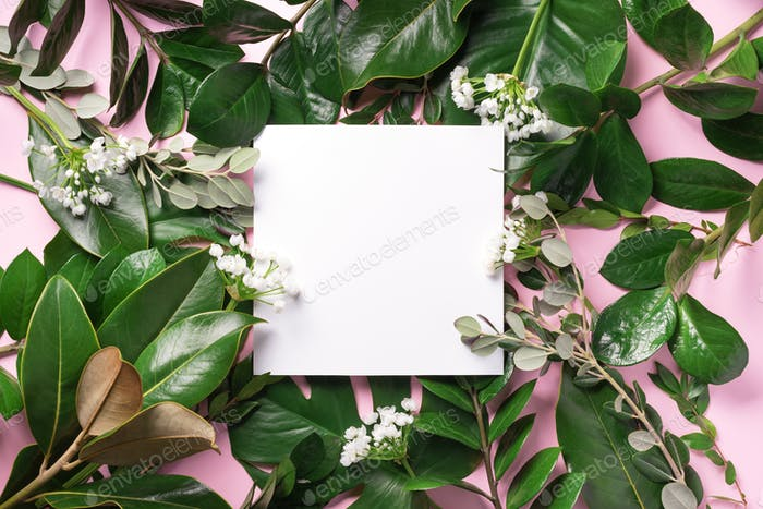 Summer and spring concept. Tropical nature background with green leaves and white empty square frame