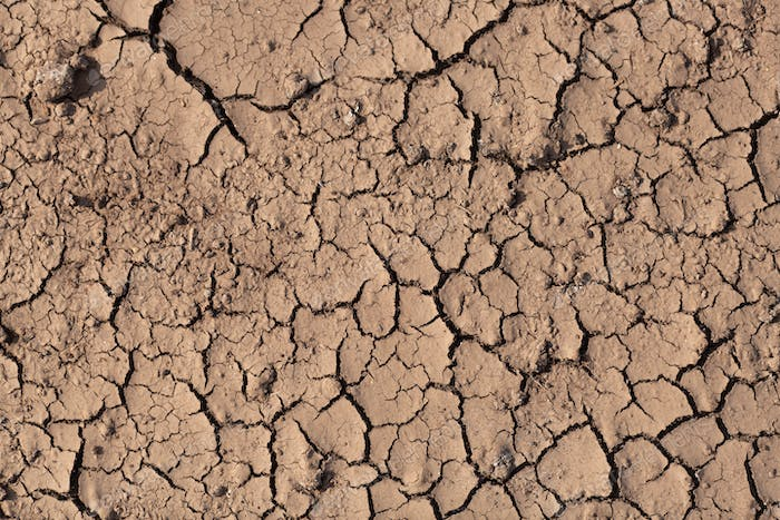 Dry cracked ground, drought