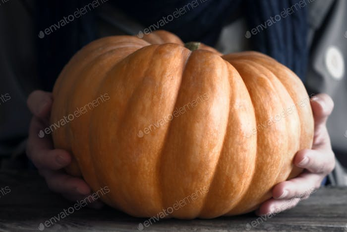 Relief pumpkin in the hand horizontal