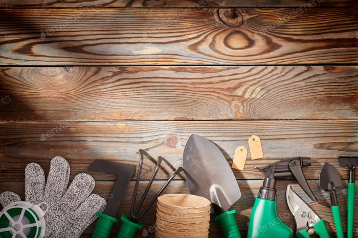 Thumbnail for Gardening tools on wooden background flat lay