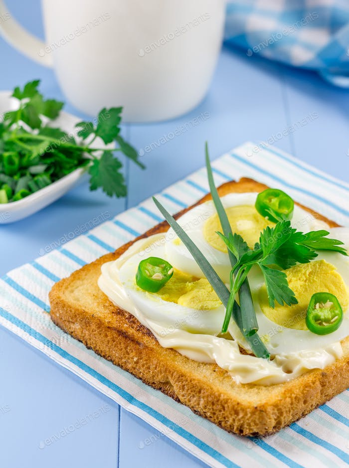 Frühstückssandwich mit Eiern, Parsly, grüner Zwiebel und grüner Chilischote