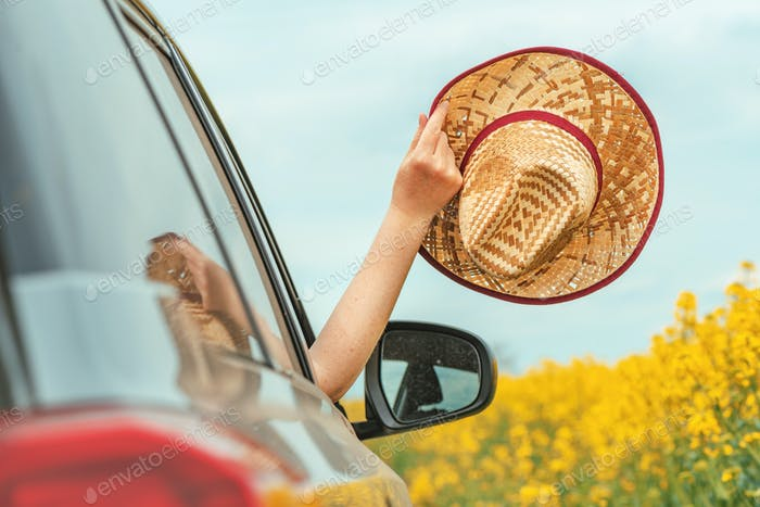 Frau genießt Autofahrt in Sommerlandschaft, Hand mit Strohhut, die aus dem Fenster greift