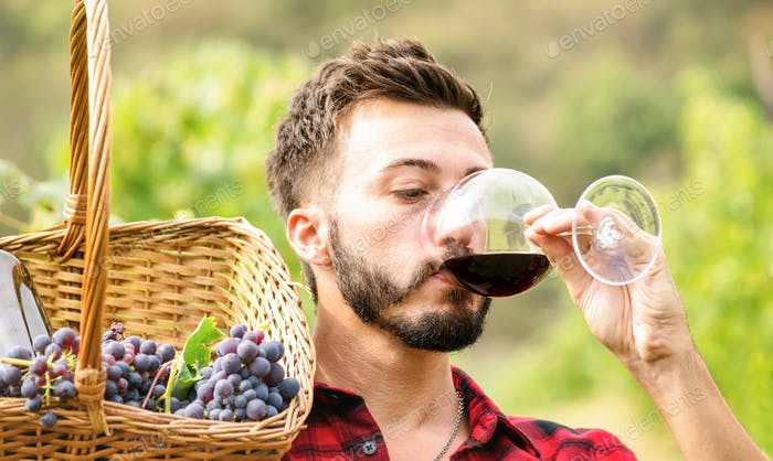 Young man tasting red wine at vineyard farmhouse