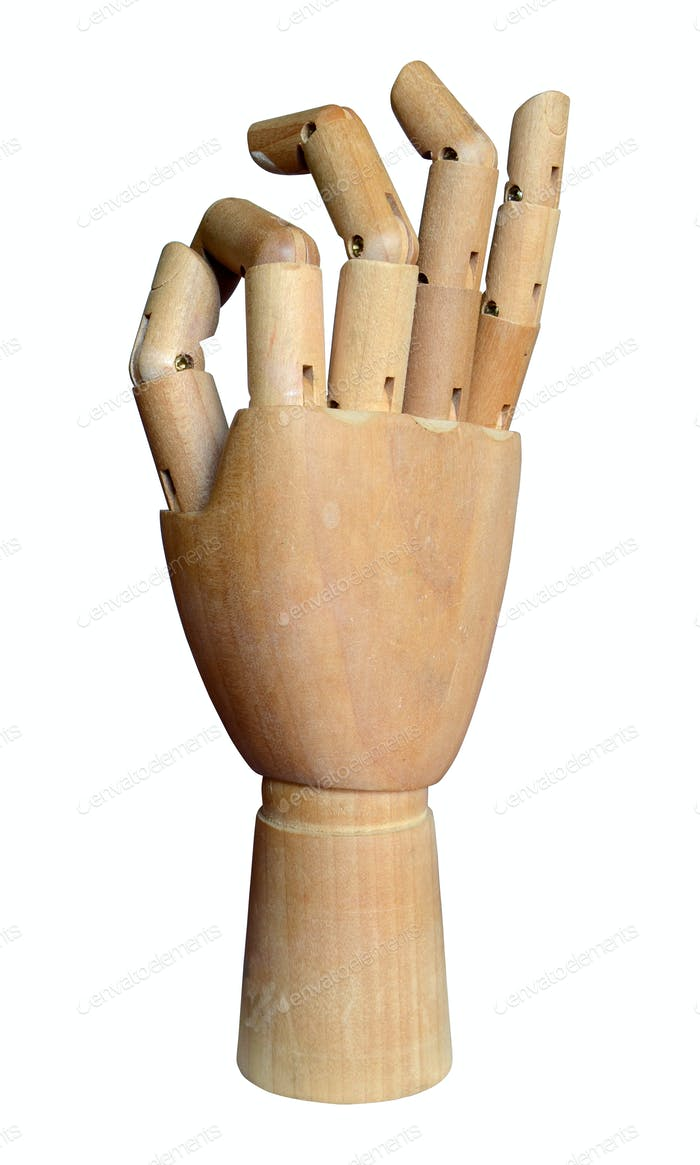 Artists jointed hand model