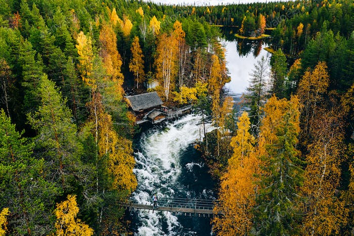Aerial view of fast and wooden cabin in beautiful orange and red autumn forest.